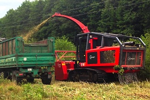 Biomassa_1